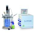 意大利solaris生物反应器/发酵罐-Jupiter
