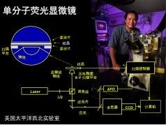 北大谢晓亮教授:单分子技术透视生命之谜