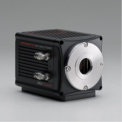 滨松sCMOS相机ORCA-Flash 4.0 V3