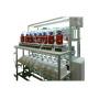 斑马鱼毒理实验仪 DL8000