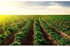 2017年度盘点:土壤监测工作稳步推进 多方受益
