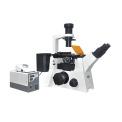 倒置荧光显微镜 MF53