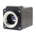 Raptor高灵敏度微光探测EMCCD相机Hawk 216