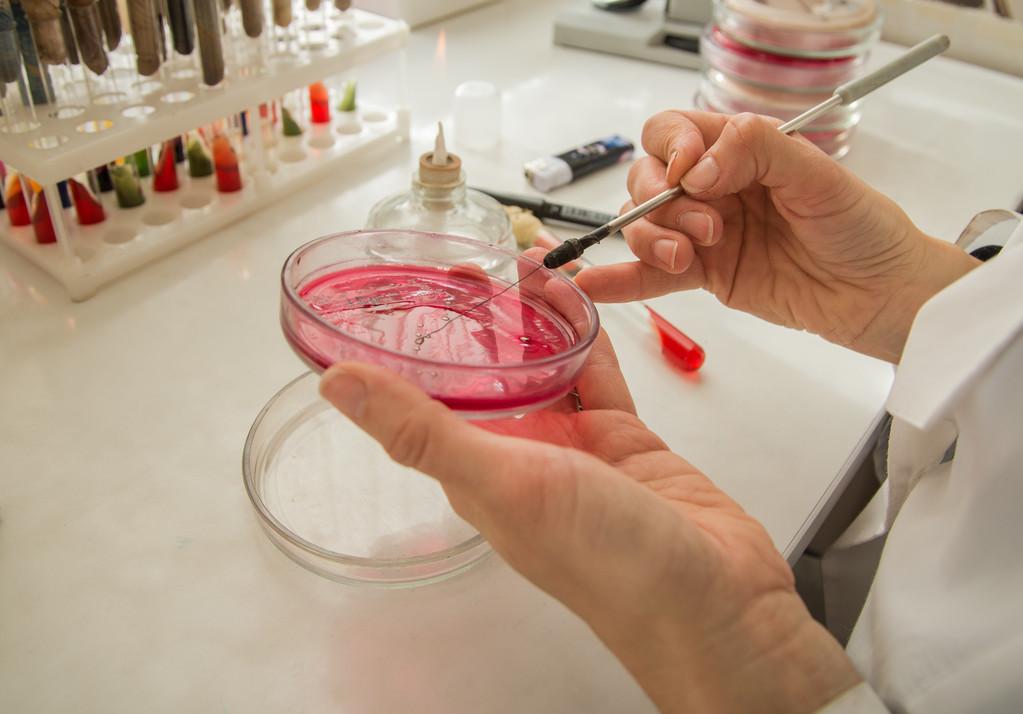 食品微生物检测