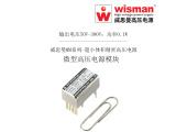 威思曼模块MMC微型高压电源 0.6kv/0.1w
