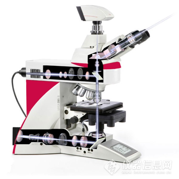 正置显微镜.jpg