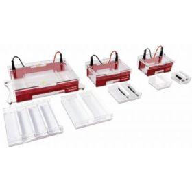 Compact 系列水平电泳仪