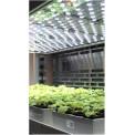 PlantScreen植物表型成像分析系?#24120;?#26893;物自动传送版)
