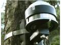 DRL26树木径向生长监测仪