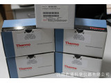 Thermo HyperSep SAX