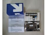 小鼠血小板活化因子(PAF)ELISA试剂盒