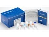大鼠心钠肽(ANP)ELISA试剂盒