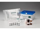 DNA甲基化检测技术服务