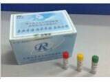 大鼠血管紧张素Ⅱ(ANG-Ⅱ)ELISA试剂盒