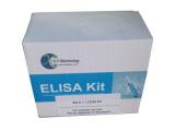 戊糖素(PTD)检测试剂盒