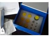 猪肌肉生长抑制素(MSTN)检测试剂盒