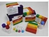 碱性磷酸酶染液(钙钴法,适用于石蜡切片)
