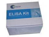 尿素氮 (BUN) 测试盒 (脲酶法)