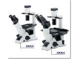 奥林巴斯CKX41倒置生物显微镜,CKX41生物显微镜