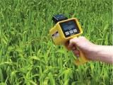 CM-1000植物叶片叶绿素仪/叶片叶绿素测定仪