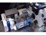 楂����辫��������绯荤�◆ Molecular Devices
