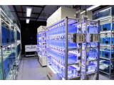 水生生物养殖系统 TMG2000
