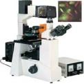 倒置荧光显微镜DFM-60D