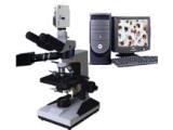 XSP-10CC透反射生物显微镜