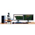 TG亚太 全景组织细胞定量分析系统