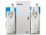赛默飞URG9000系列离子色谱在线监测系统