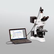 百特图像颗粒分析系统BT-1600