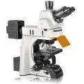 Nexcope 正置荧光显微镜