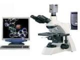 一滴血显微镜