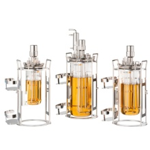Infors台式小型发酵罐minifors2