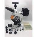 KOSTER UMC-800TFL生物荧光显微◤镜
