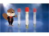 5mL核酸保存管43801海狸生物