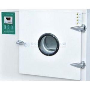 E型电热鼓风干燥箱