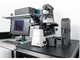 WITec  alpha300 RI 倒置拉曼成像光谱仪