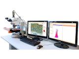 TG亚太 免疫组化定量分析系统
