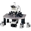 尼康FN1電生理顯微鏡