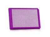 FrameStar® PCR板