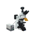 研究级客户端荧光显微镜MF43