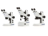 蔡司 Stemi305 体视显微镜