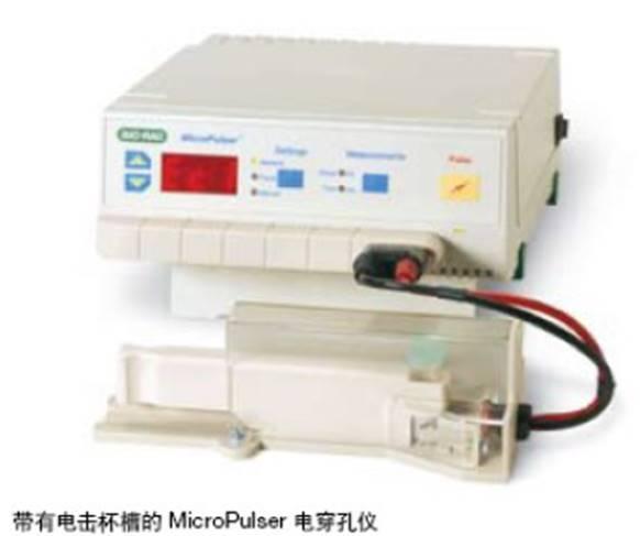 伯乐电穿孔仪MicroPulser