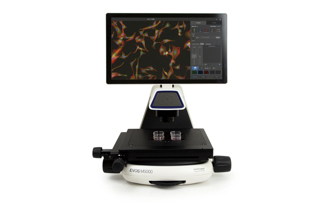 Invitrogen EVOS M5000活细胞荧光成像系统
