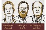 2018诺贝尔化学奖授予三位科学家 附历年得主盘点