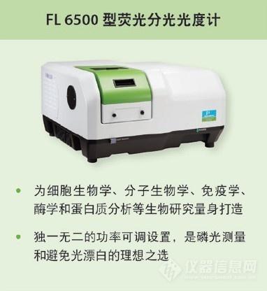 FL6500.jpg