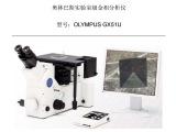 奥林巴斯GX51倒置显微镜