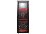 EP-7000 在线离子色谱仪