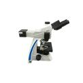 荧光显微镜 MF31